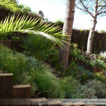 Les 10 claus per l'èxit del teu jardí
