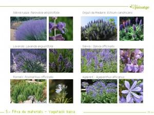 Fitxa de materials i vegetació jardí