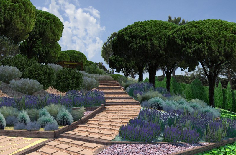 Design of a community garden in Tossa de Mar