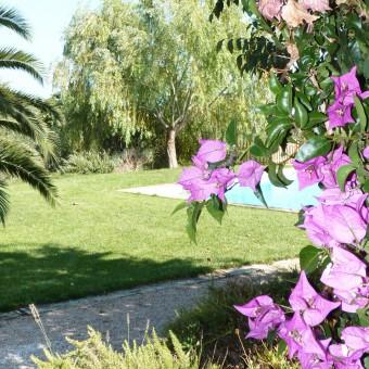 Jardín rural en el Baix Camp