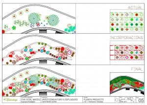 Plànol de plantacions jardí