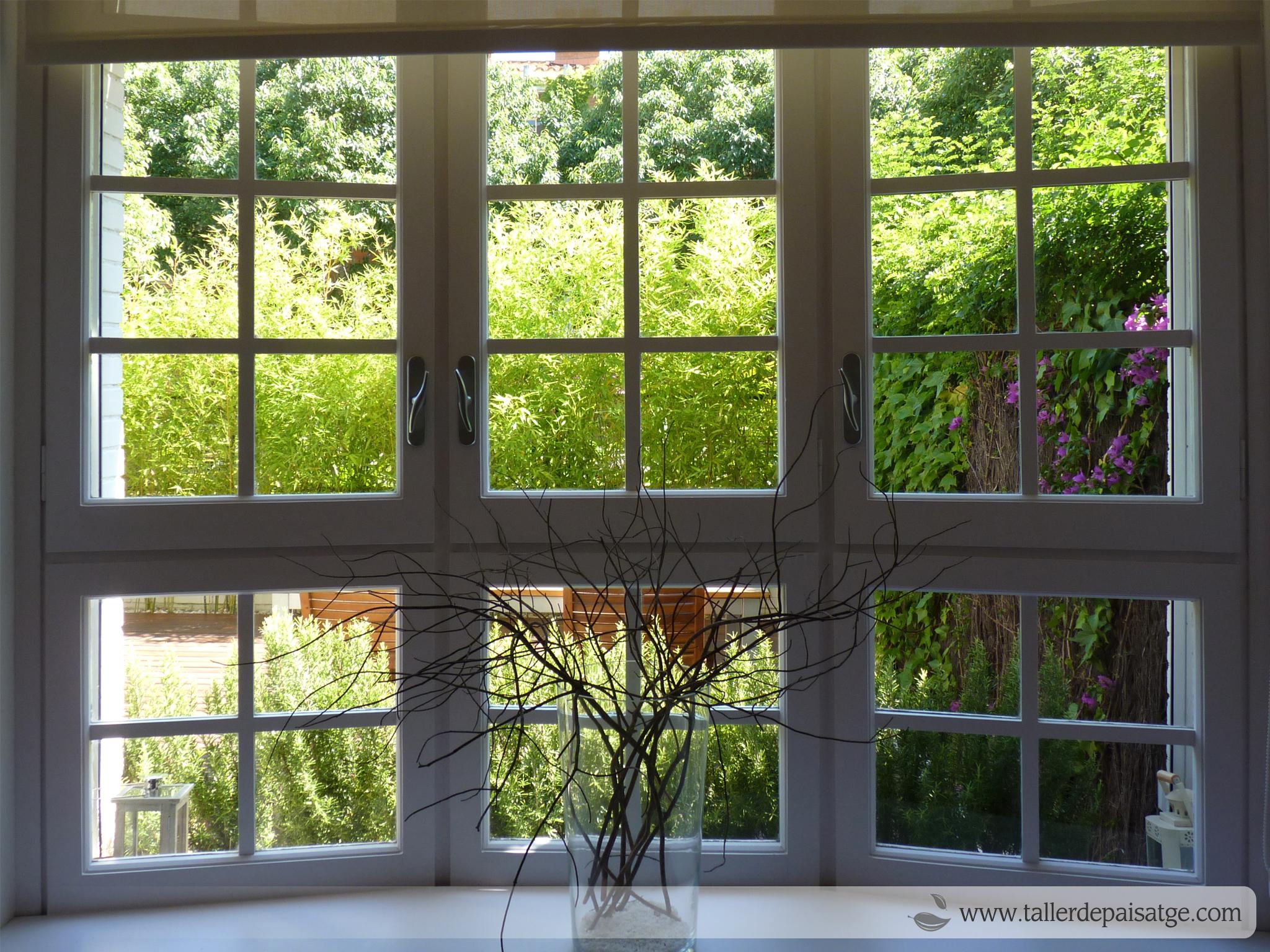 vista jardí des de finestral interior