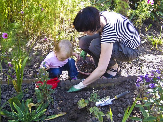 gaudir del jardí en família