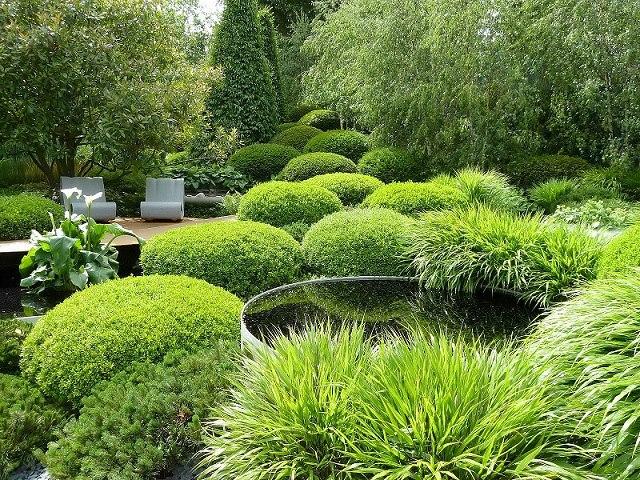 TDP011 04- jardin diseño