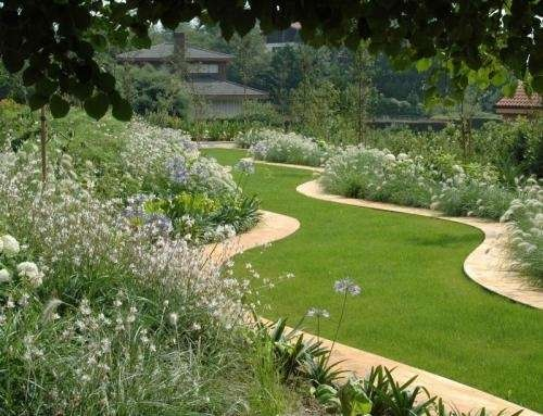 TDP011 06- jardin diseño