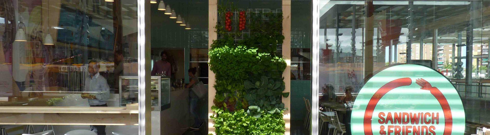 Vertical vegetable garden in a restaurant in Barcelona